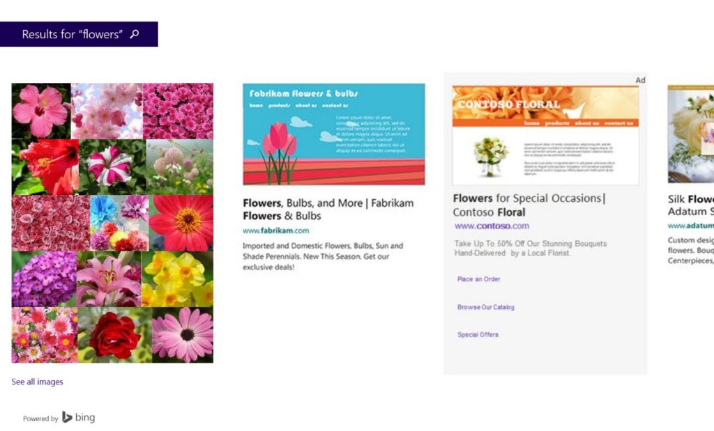 bing smart search ad example